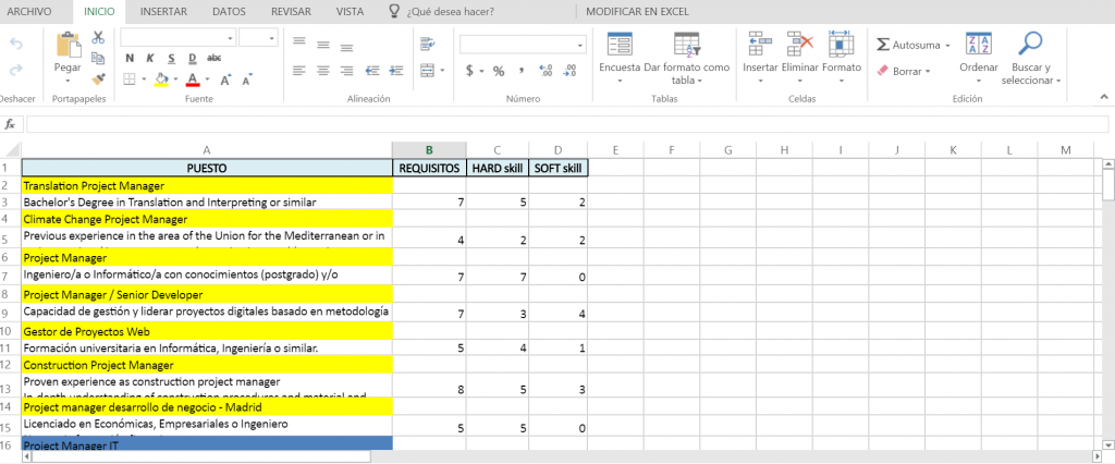 Screenshot Excel project manager LinkedIN